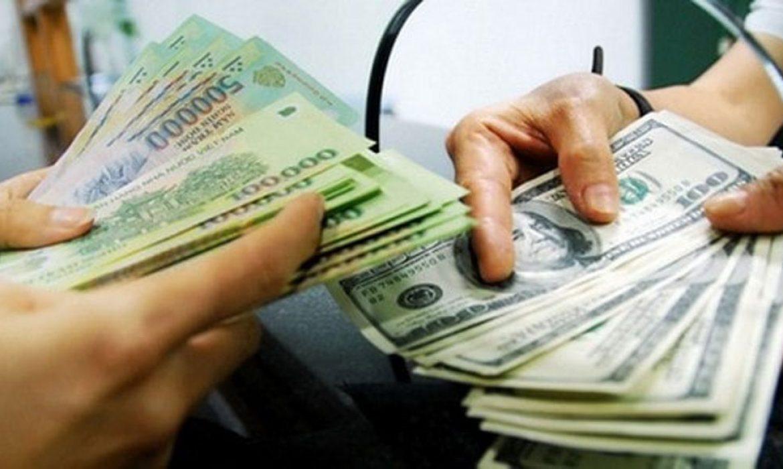 Chênh lệch tỷ giá, chi phí lãi vay và lãi tiền gửi trong giai đoạn trước hoạt động